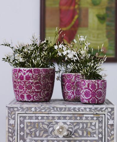 sum09_pink-plant-pots