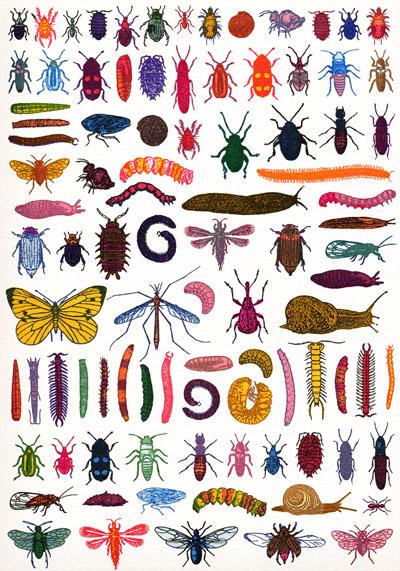 Garden Pests print, John Dilnot
