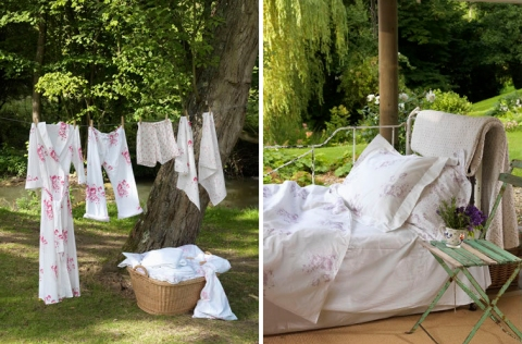 Cabbages bed-laundry