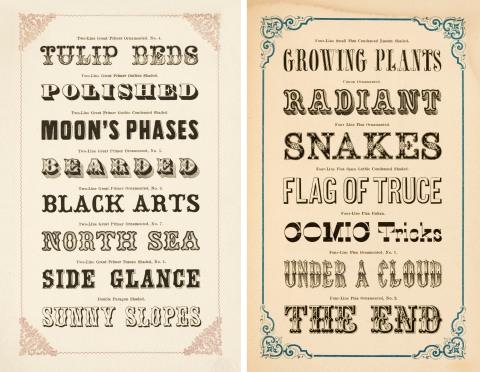 typography1