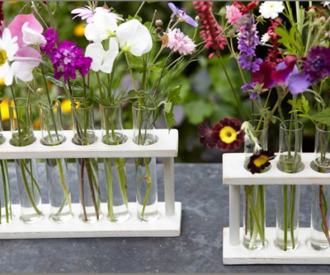 Test tube holder, RE, vase, flower display, single blooms, Spring flowers, floral display, flowers, ideal home, RE, homeshoppingspy, alice humphrys