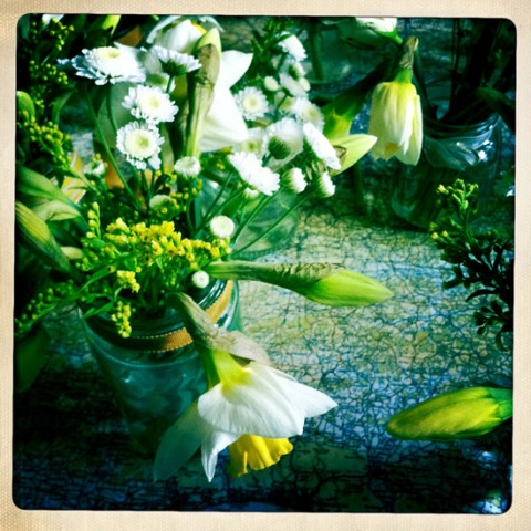 Spring flowers, daffodils, countryside, Devon, Spring, flower display, country flowers, ideal home, homeshoppingspy, alice humphrys